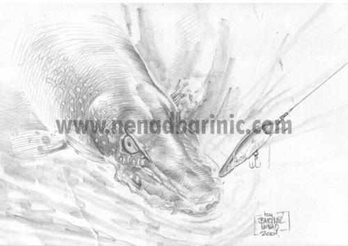 ilustracija stuka na vobler 2001